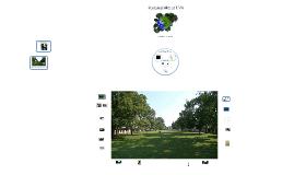 Sustainability at UVA