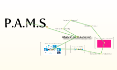 PAMS mk2
