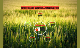 Advantages of genetically modified food