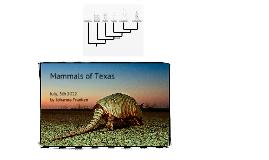 Copy of Mammals of Texas