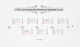 CNSL 500 Group Development (Summer 2014)