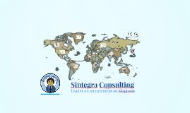 Sintegra Consulting