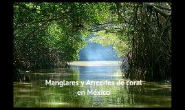 Manglares y Arrecifes de coral en México