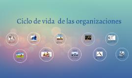 Cielo de vida  de las organizaciones