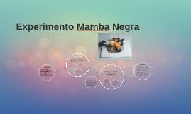 Copy of Experimento Mamba Negra