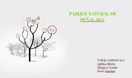 PARQUE NATURAL DE PEÑALARA .