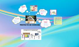 Copy of T P C - Alimentación y desarrollo