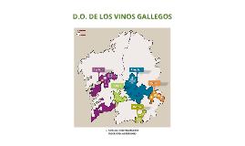 Copy of D.O. DE LOS VINOS GALLEGOS