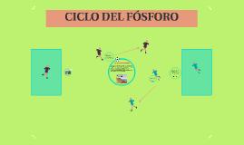 Copy of CICLON DEL FOSFORA