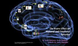 The Brains Effect on Rational and Emotional Behavior