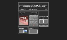 Preparaciòn de Muñones