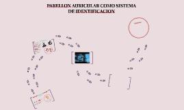 Copy of PABELLON AURICULAR COMO SISTEMA DE IDENTIFICACION