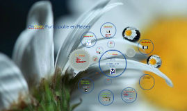 Presentatie OnGein: Participatie en Plezier