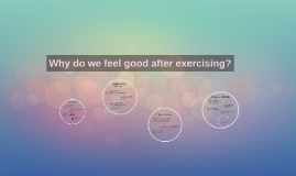 Why do you feel good after exercising?