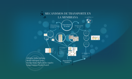 MECANISMOS DE TRANSPORTE EN LA MEMBRANA