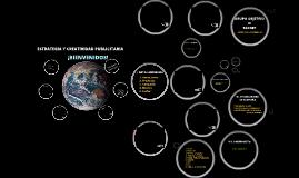 11º Estrategia y Creatividad 2014 - Taller de Verano