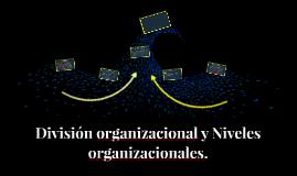 División organizacional y Niveles organizacionales.