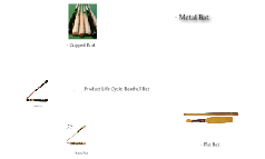 Product Life Cycle of the Baseball Bat
