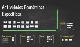 Actividades Económicas Específicas