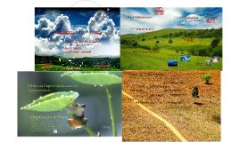 SD1- Fragmentação de Ecossistemas: Causas e Efeitos sobre a Biodiversidade