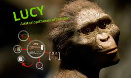 Copy of Copy of LUCY- Australopithecus Afarensis