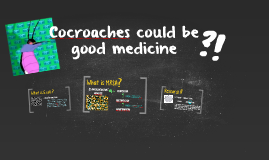 Cocroaches could be good medicine?!