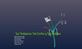Los indigenas del Caribe