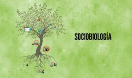 Copy of  SOCIOBIOLOGÍA