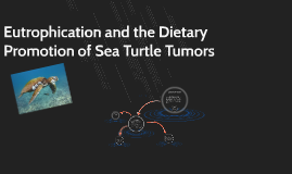 Is Pollution Linked to                      Turtle Tumors?