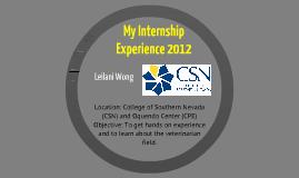 My Internship Experience 2012
