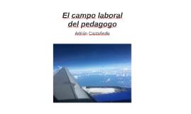 El campo laboral del pedagogo