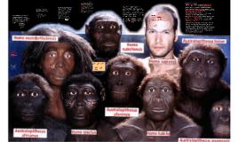 Los avances de la biología confirman la inclusión del hombre