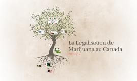 La Legalisation de Marijuana