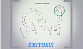 TRABAJO DE CAMPO 1