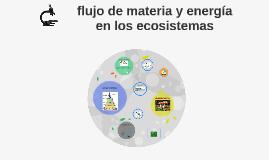 flujo de materia y energía en llos ecosistemas