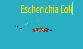 Eschericha Coli