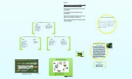 Biofuel from Algae