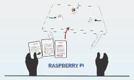 RASPBERRY IP
