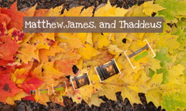 Matthew,James, and Thaddeus