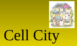 Copy of Cell  City