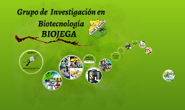 GRUPO DE INVESTIGACION EN BIOTECNOLOGIA