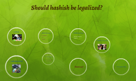Copy of Should hashish be legalized?