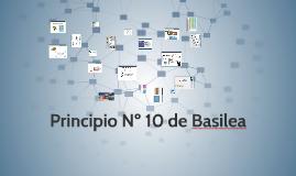 Principio Nº 10 de Basilea
