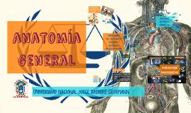 Anatomía general y posiciones anatómicas