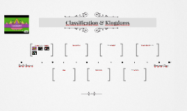 Classification & Kingdoms