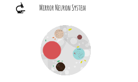 Mirror Neuron System