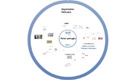 Agilité (Vision, Organisation et méthodes)