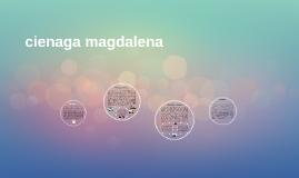 cienaga, magdalena