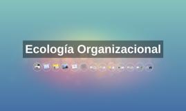 Ecología Organizacional