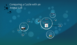 Cell analogy Project (Castle)